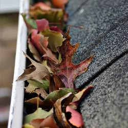 Clogged gutters filled with fall leaves  in Champlin