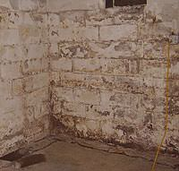 Peeling, Chipping, Basement Wall Coatings in Chaska